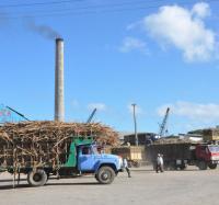 Cumplió el Central Enidio Díaz de Campechuela su plan de producción de azúcar.